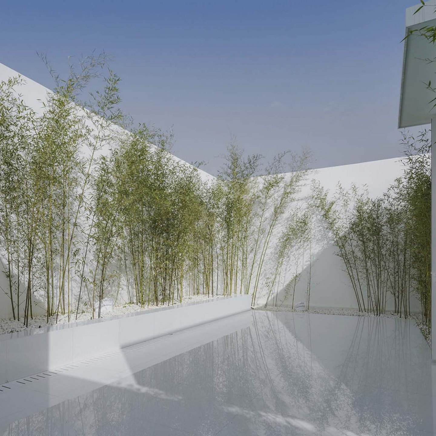 Architecture- V sudio-rooftopbamboogarden-01