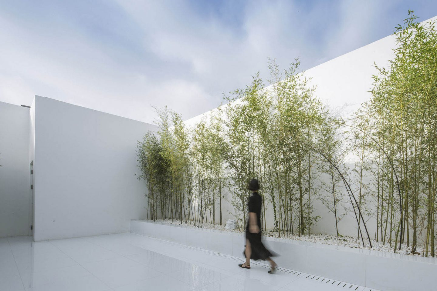 Architecture- V sudio-rooftopbamboogarden-03