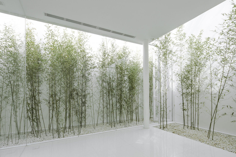 V Studio S Rooftop Bamboo Garden Ignant