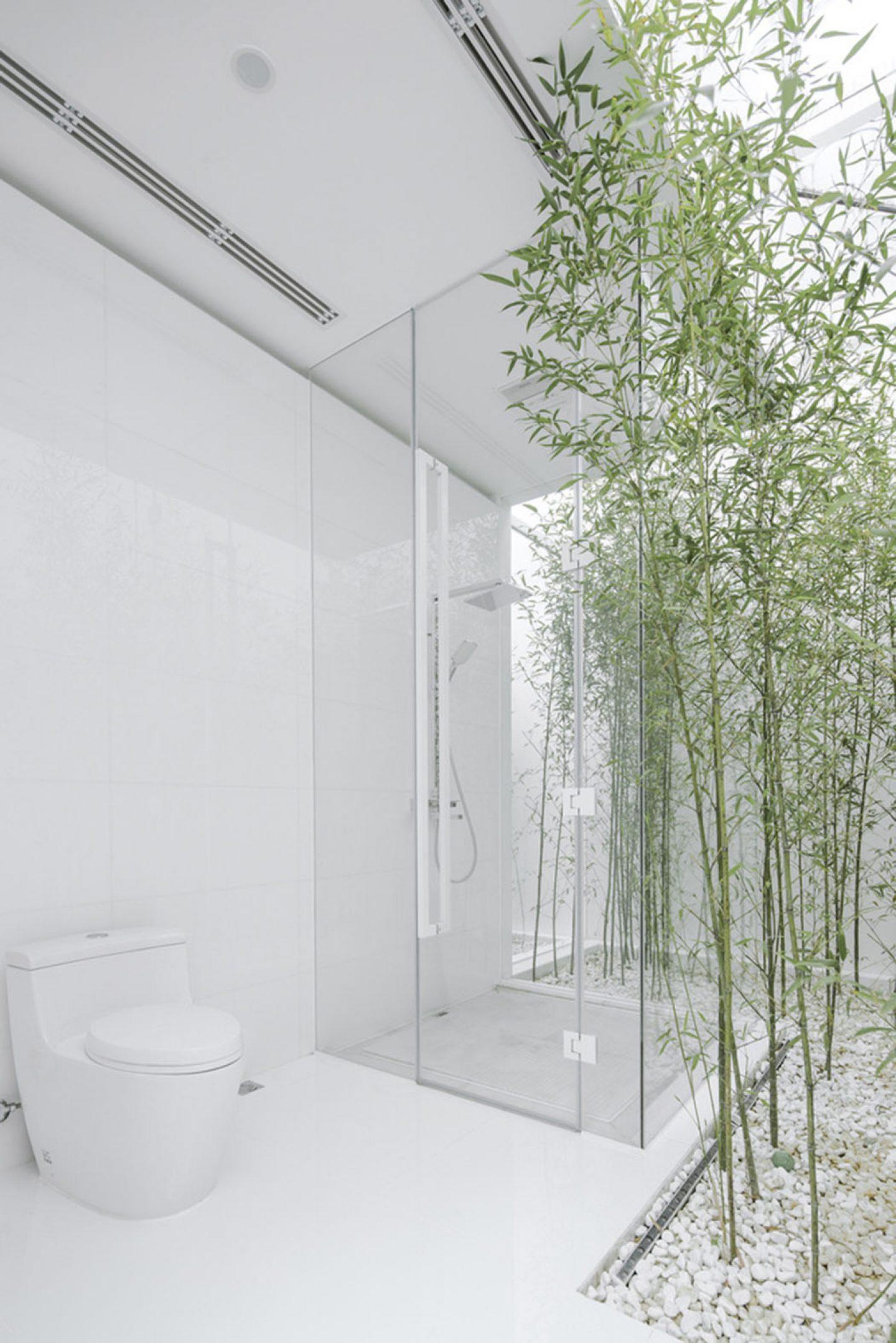 Architecture- V sudio-rooftopbamboogarden-14
