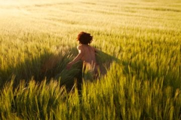 Header-RyanMcGinley-WeTransfer