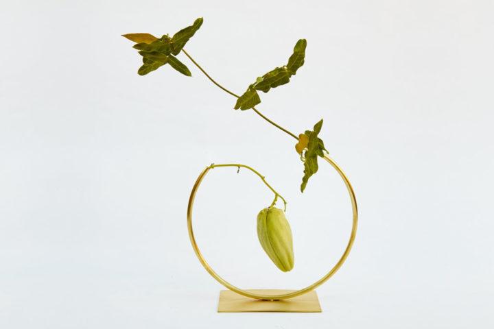ignant-design-anna-varendorff-acv-032pre