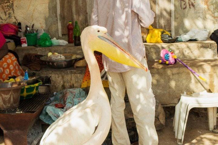iGNANT-Photography-Jussi-Puikkonen-Senegal-09
