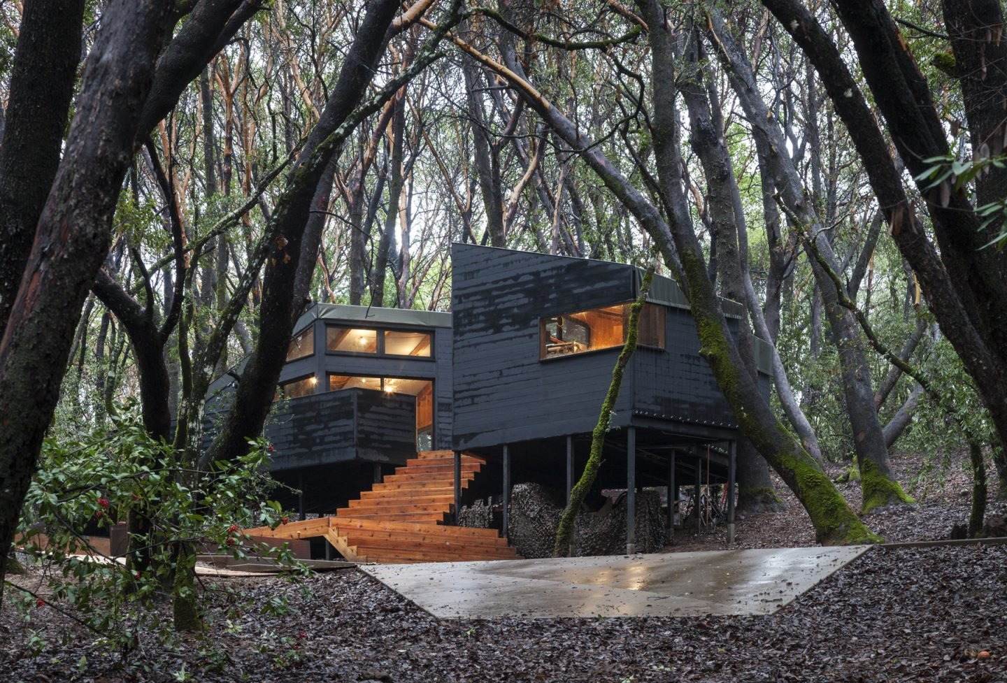 iGNANT-Architecture-Envelope-Architecture-&-Design-Forest-House-04