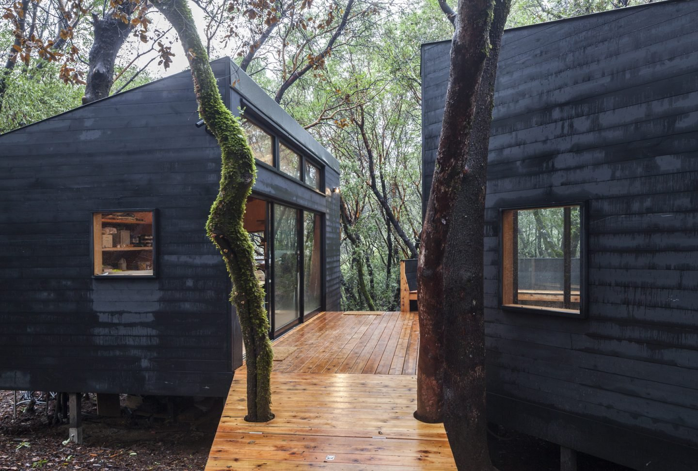 iGNANT-Architecture-Envelope-Architecture-&-Design-Forest-House-05
