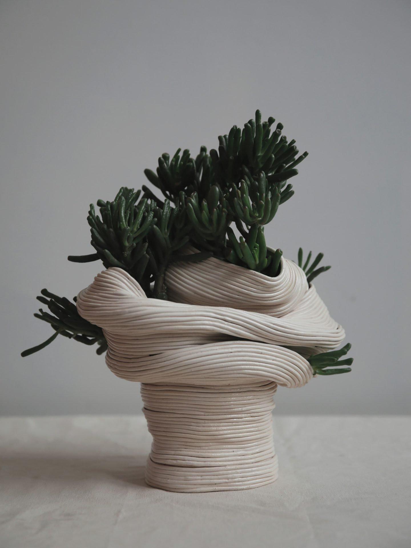 iGNANT-Design-Zhu-Ohmu-Plantsukuroi-01