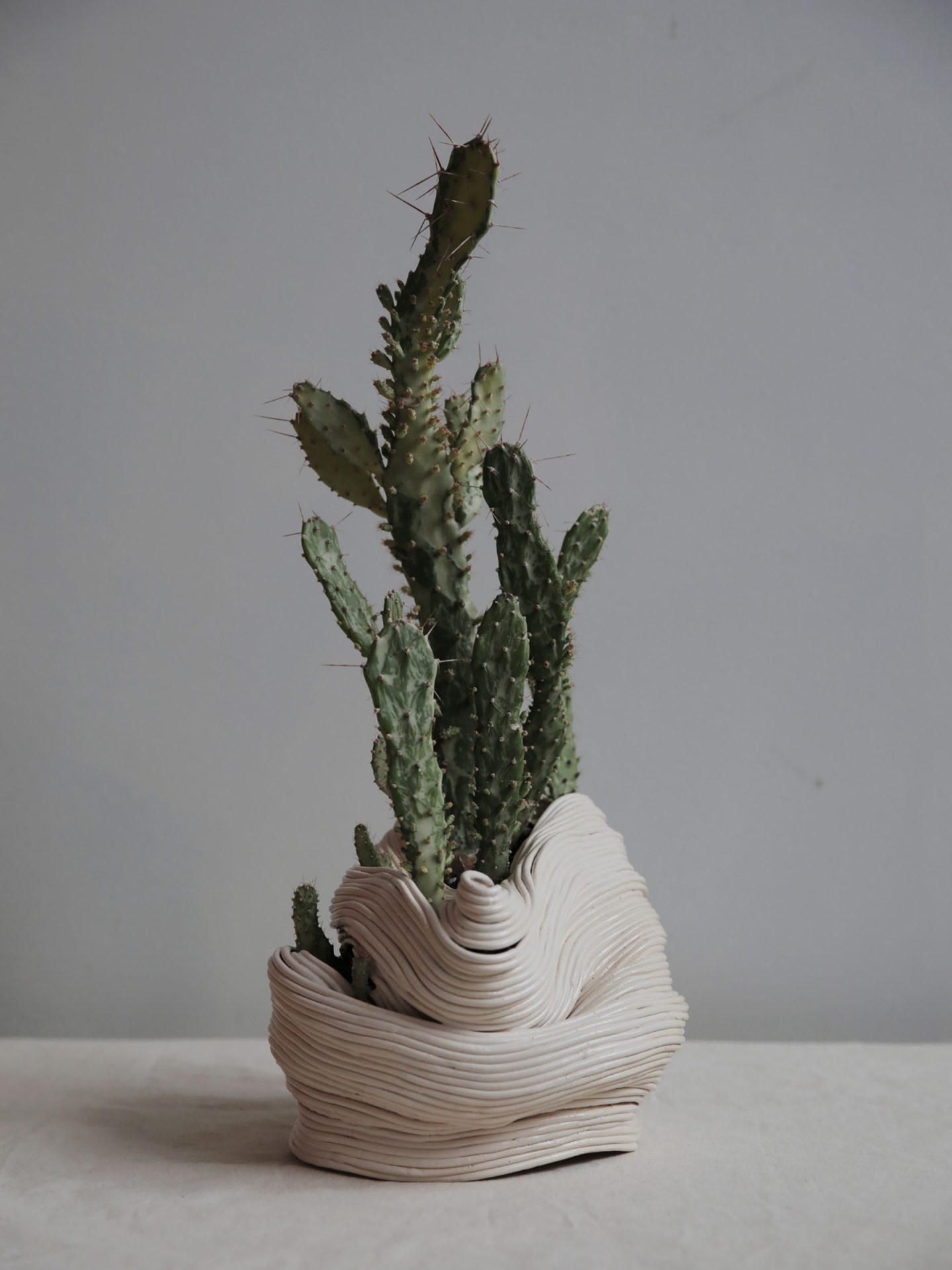 iGNANT-Design-Zhu-Ohmu-Plantsukuroi-04
