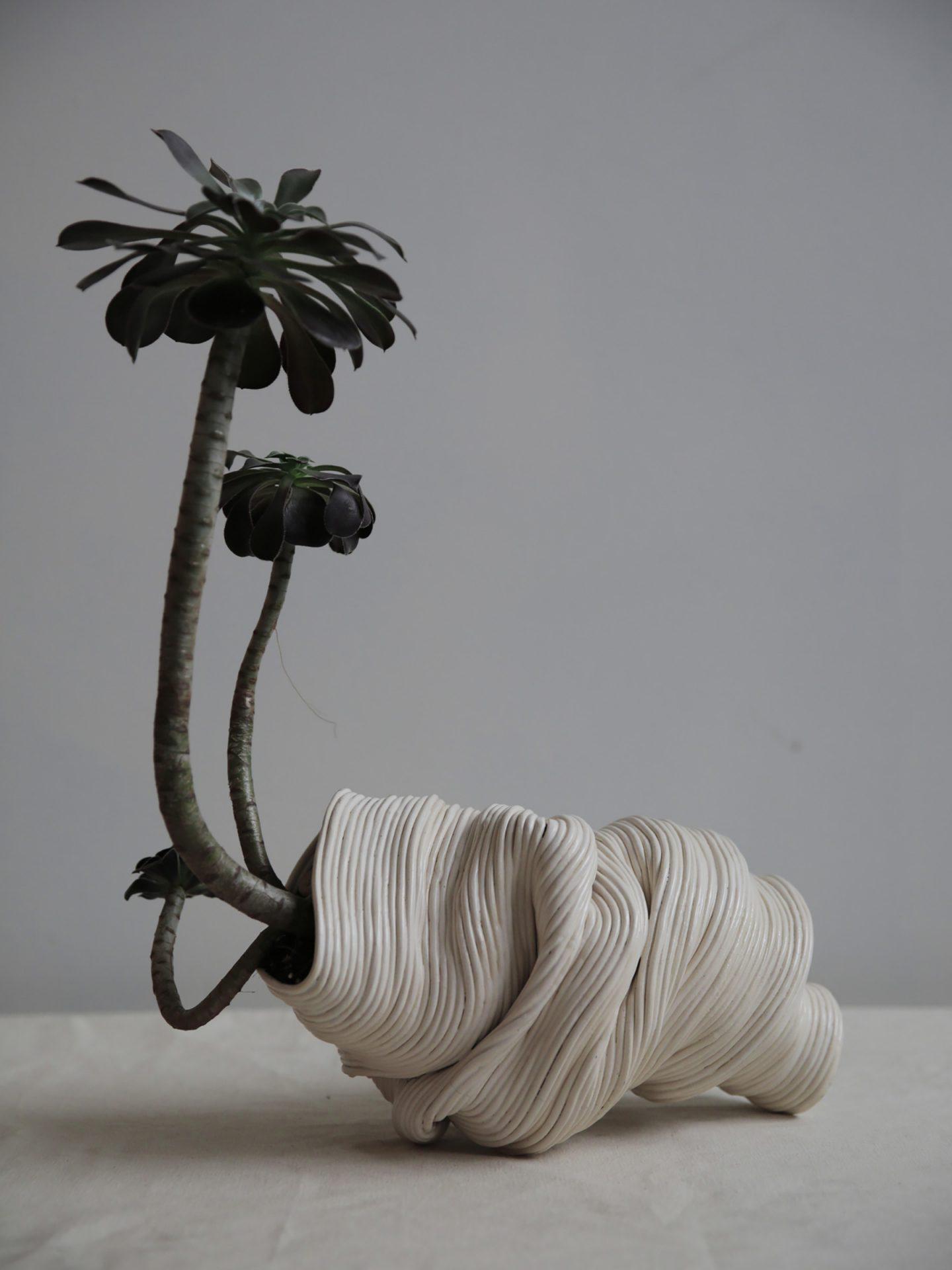 iGNANT-Design-Zhu-Ohmu-Plantsukuroi-05