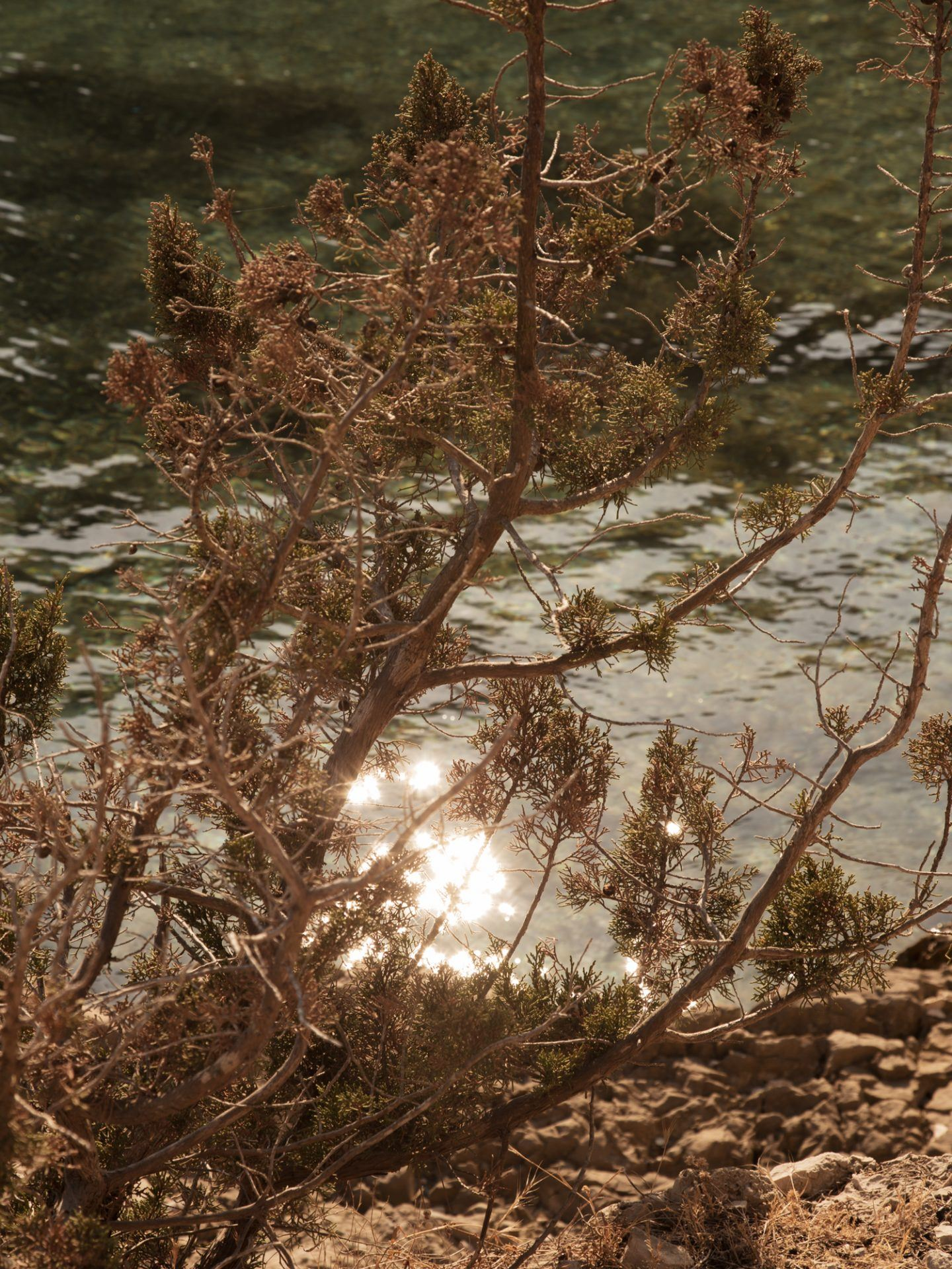 IGNANT-Photography-Anne-Sophie-Soudoplatoff-Songe-1
