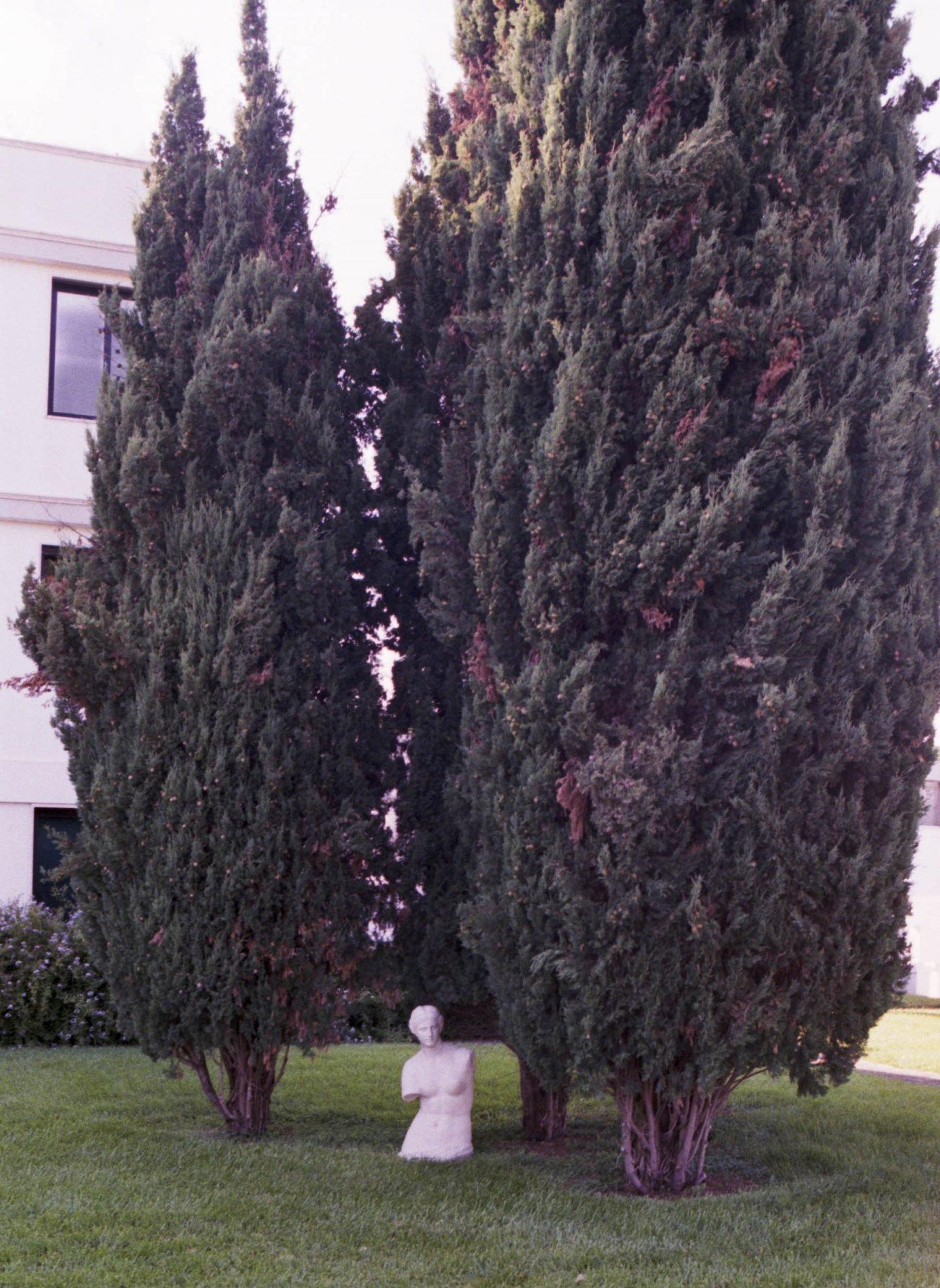 iGNANT-Stefan-Giftthaler-Statues-08 2