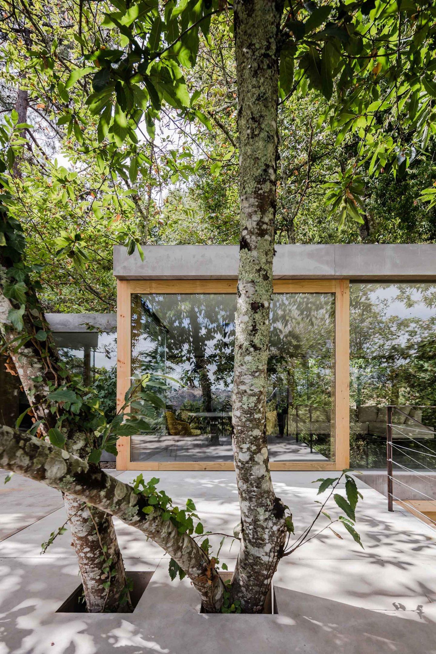 iGNANT-Architecture-Ernesto-Pereira-04