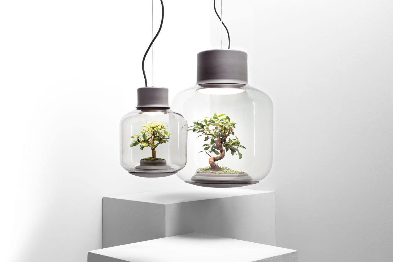 ignant-mygdal-plantlight-2