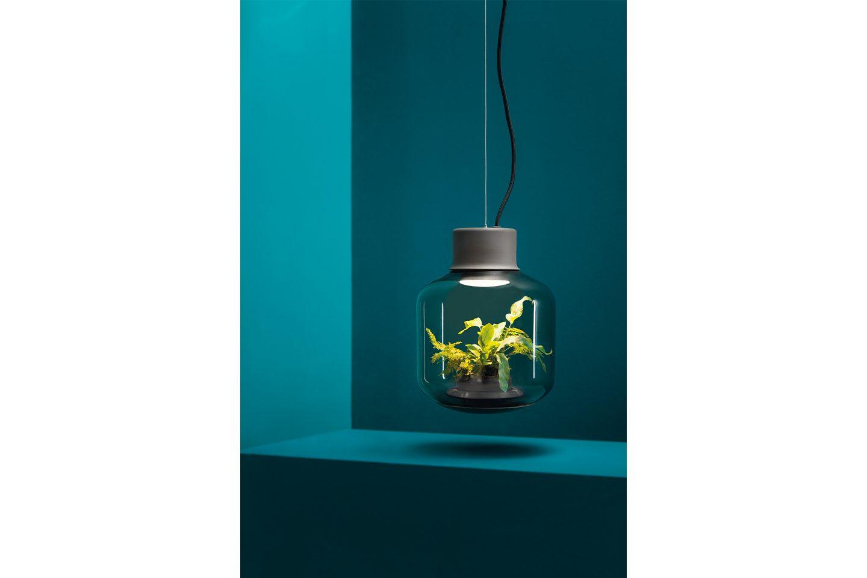 ignant-mygdal-plantlight-4