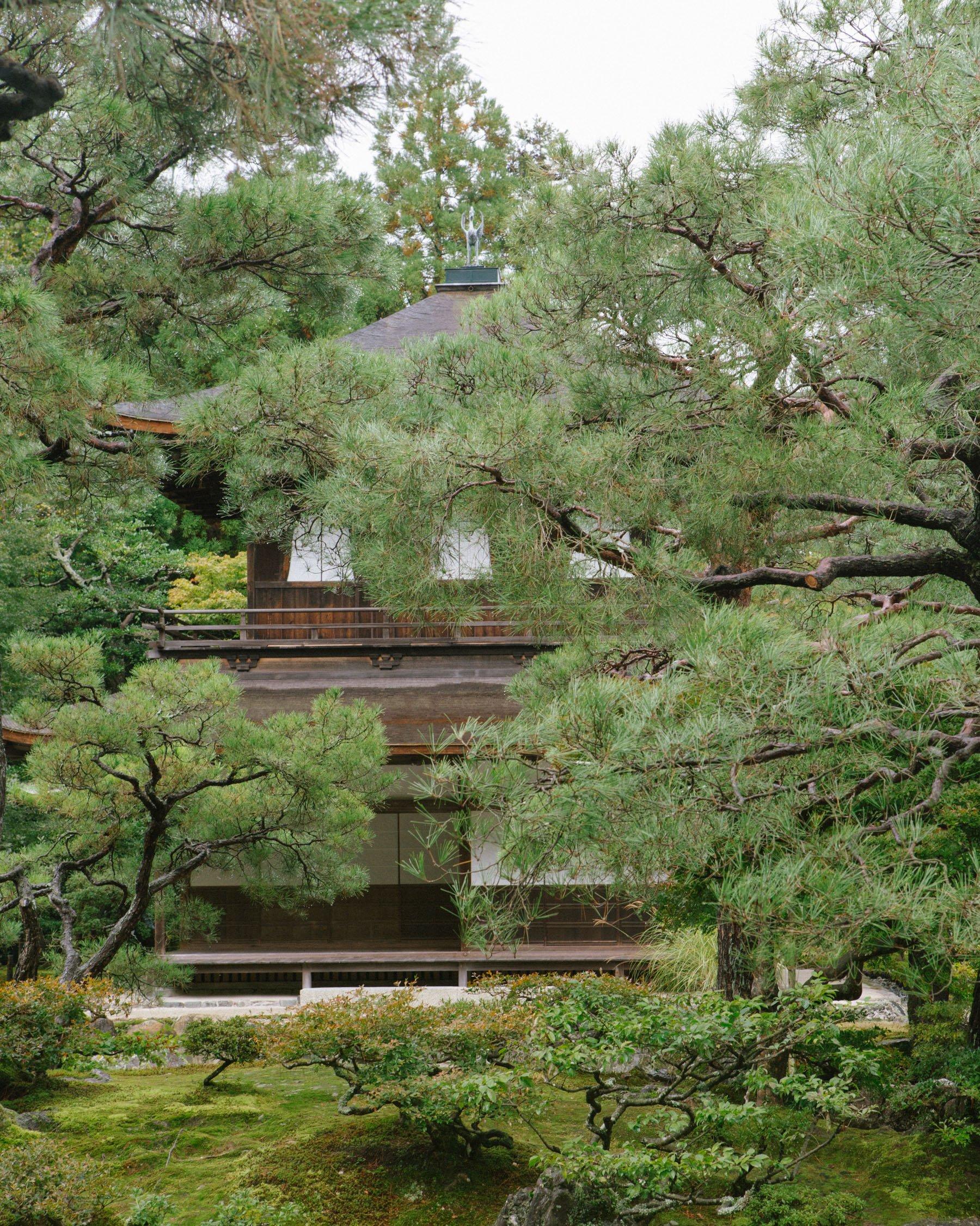 iGNANT-Photography-Will-Matsuda-Kyoto-023