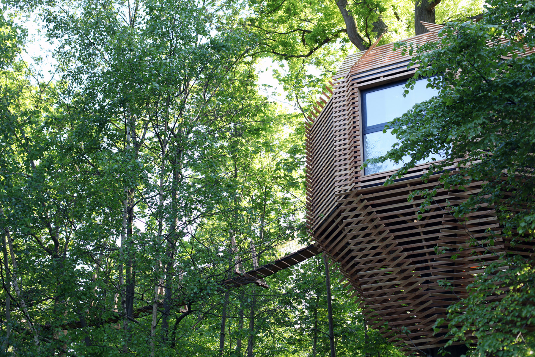 iGNANT-Architecture-Atelier-Lavit-Origin-Tree-House-002
