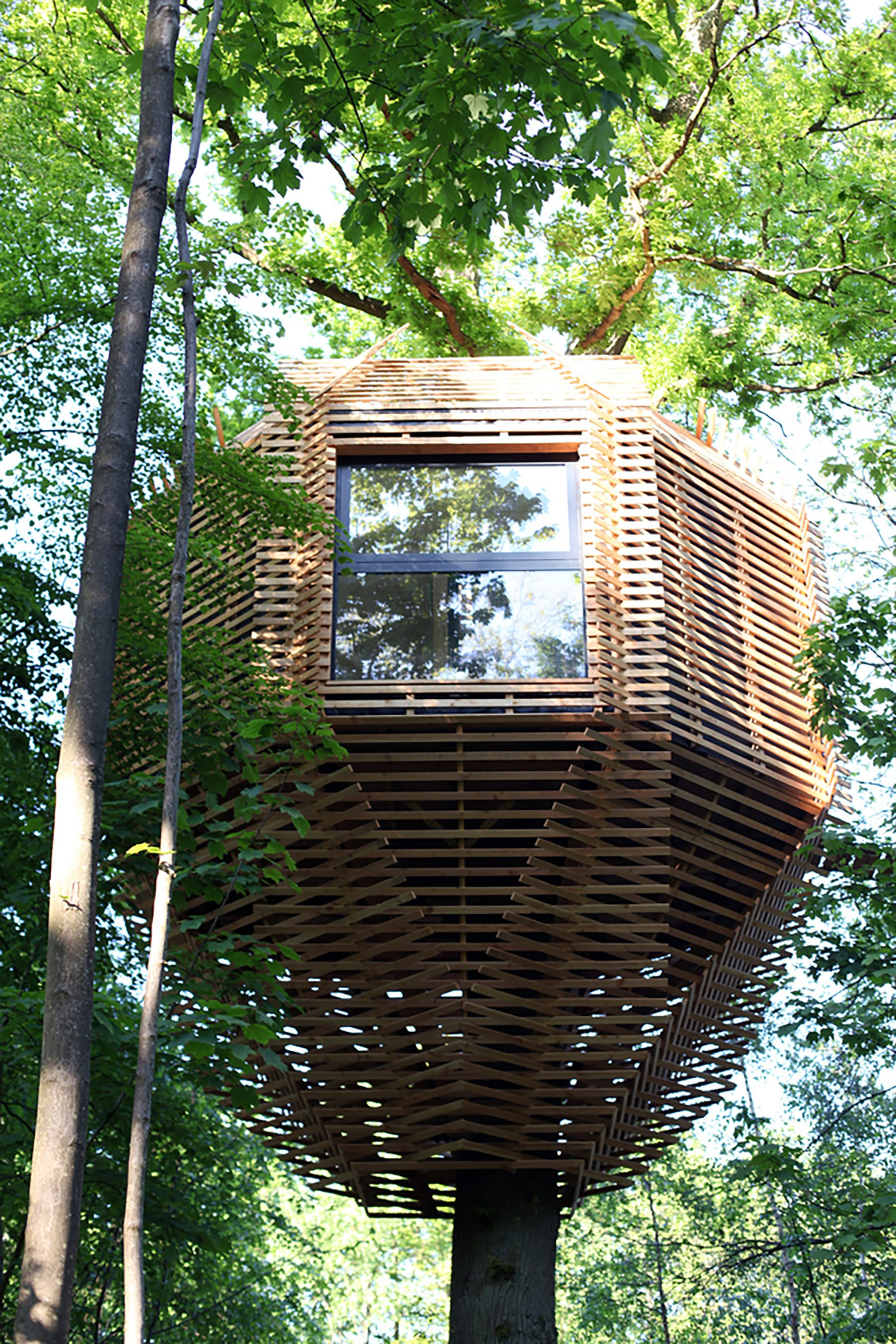 iGNANT-Architecture-Atelier-Lavit-Origin-Tree-House-011