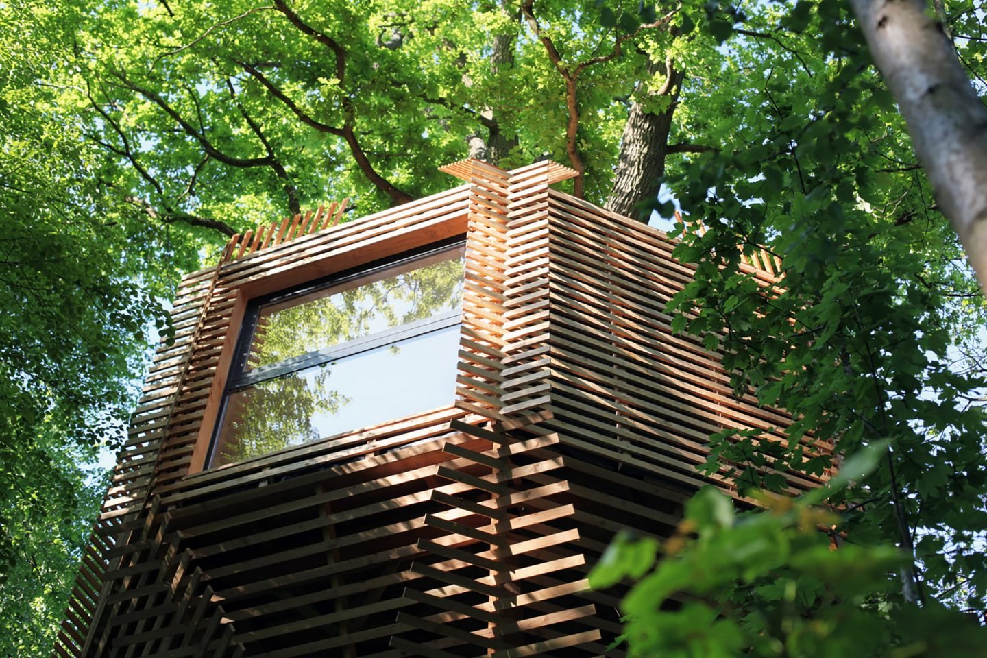 iGNANT-Architecture-Atelier-Lavit-Origin-Tree-House-012
