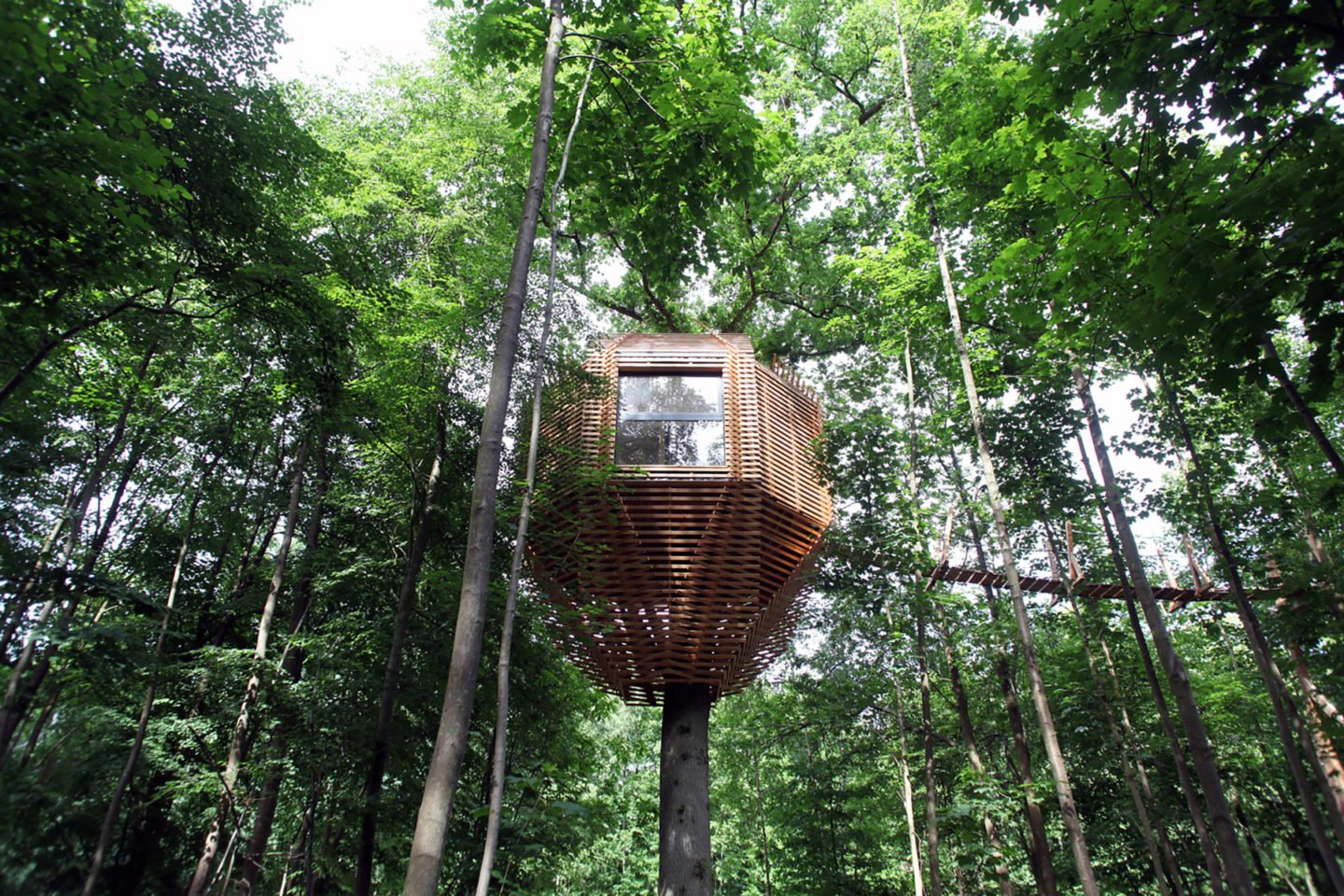 A Tree House In The Forest By Chateau De Raray Ignant