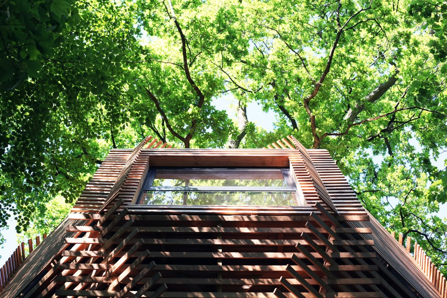 iGNANT-Architecture-Atelier-Lavit-Origin-Tree-House-015