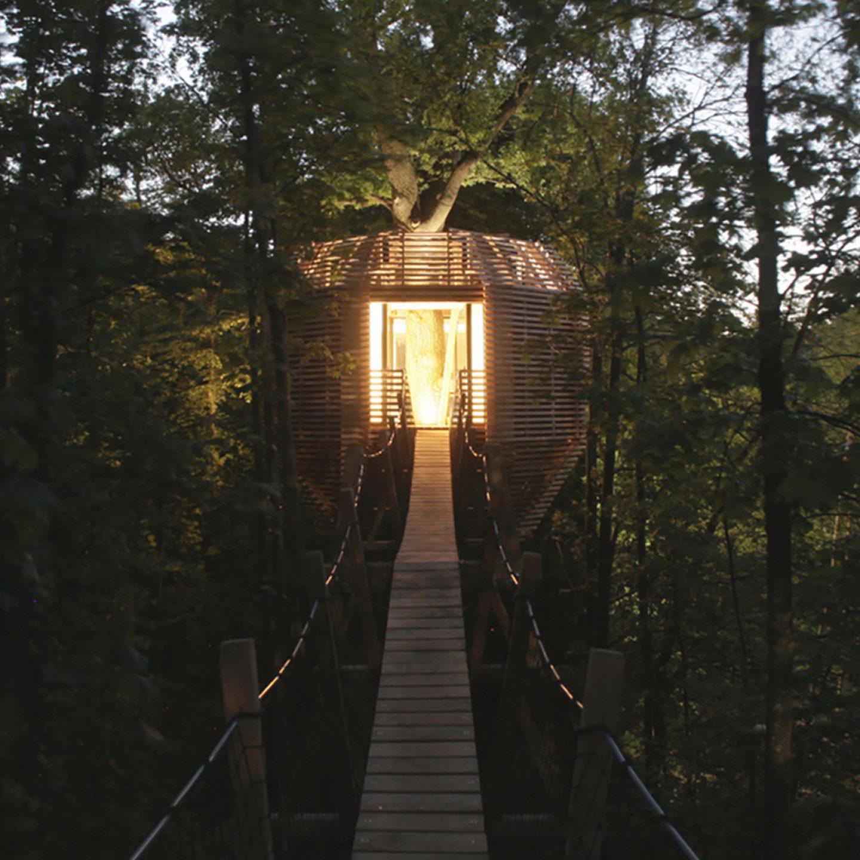 iGNANT-Architecture-Atelier-Levit-Origin-Tree-House-001b