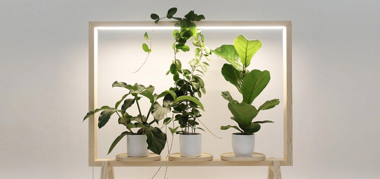 iGNANT-Design-Limbus-GreenFrame-001
