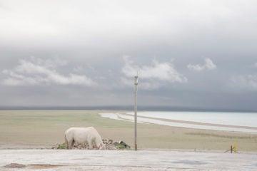 iGNANT-Photography-Francesca-Pozzi-Itinerari-Della-Mente-03