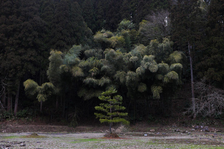 iGNANT-Photography-Ryosuke-Takamura-Selection-021