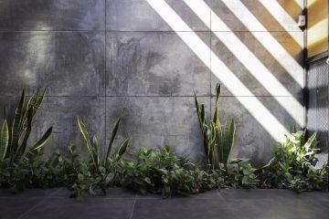 iGNANT-Architecture-Ariel-Valenzuela-And-Diego-Ledesma -Casa-Papagayo-15b
