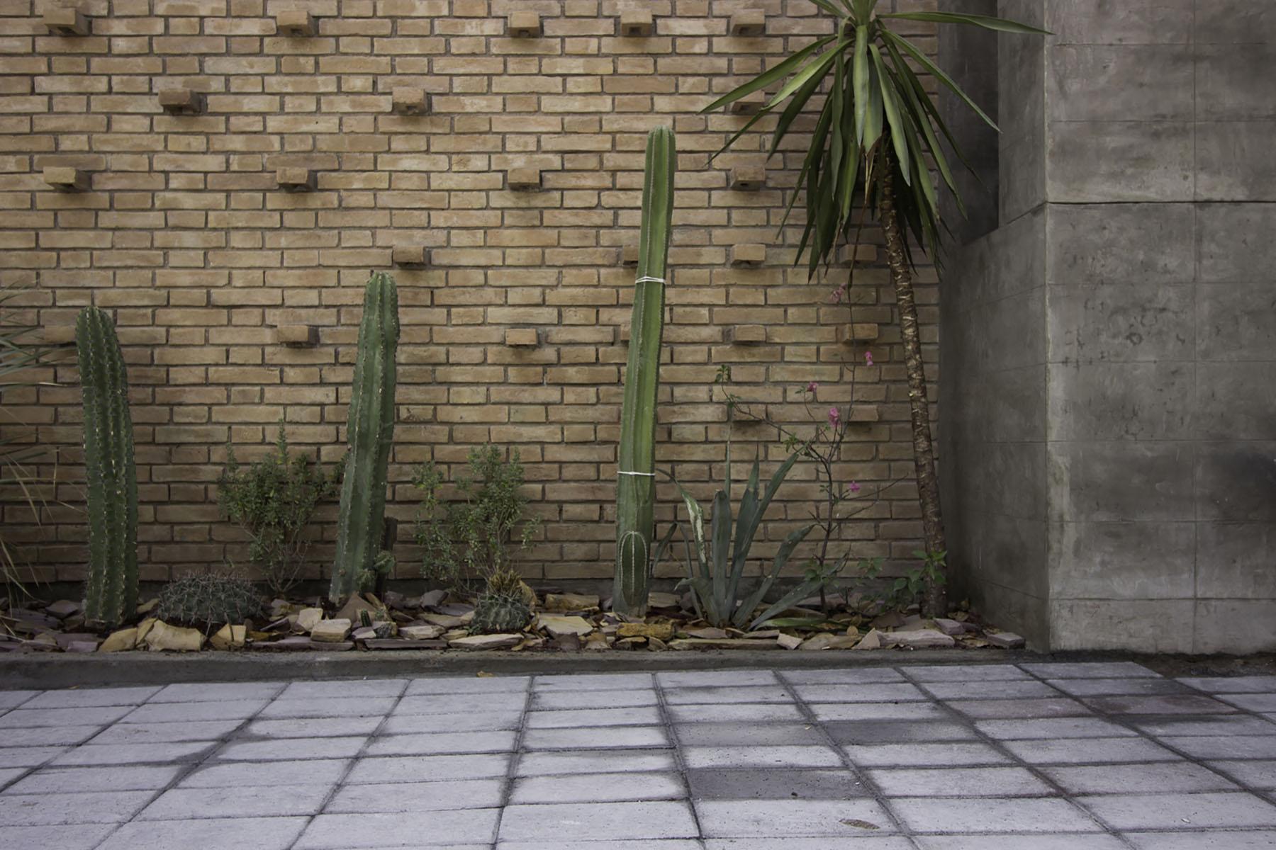 iGNANT-Architecture-Ariel-Valenzuela And-Diego-Ledesma -Casa-Papagayo-E