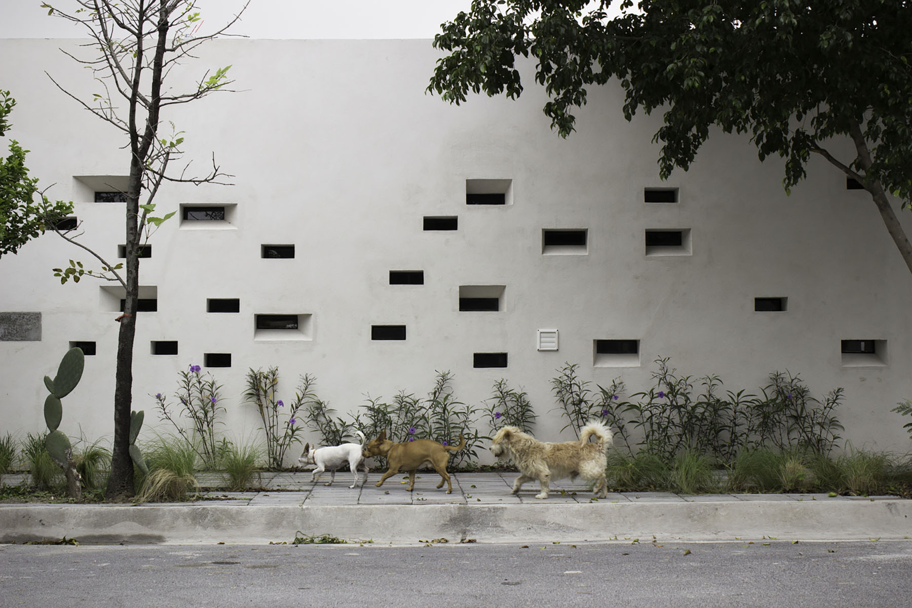 iGNANT-Architecture-Ariel-Valenzuela And-Diego-Ledesma -Casa-Papagayo-F