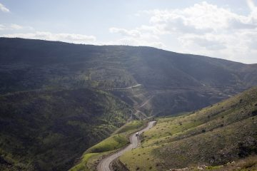 Landscape in the Galilean region (Israel), 2017.