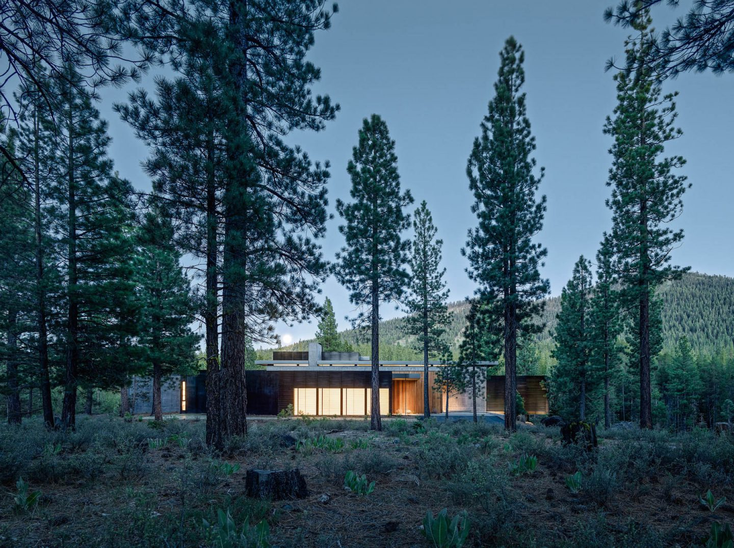 iGNANT-Architecture-Faulkner-Architects-Creek-House-19