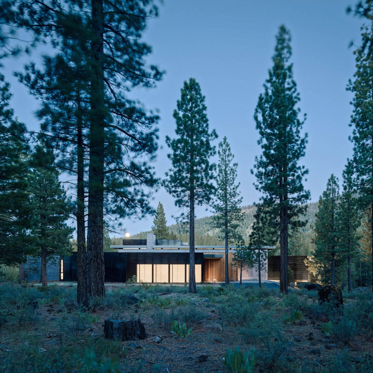 iGNANT-Architecture-Faulkner-Architects-Creek-House-20