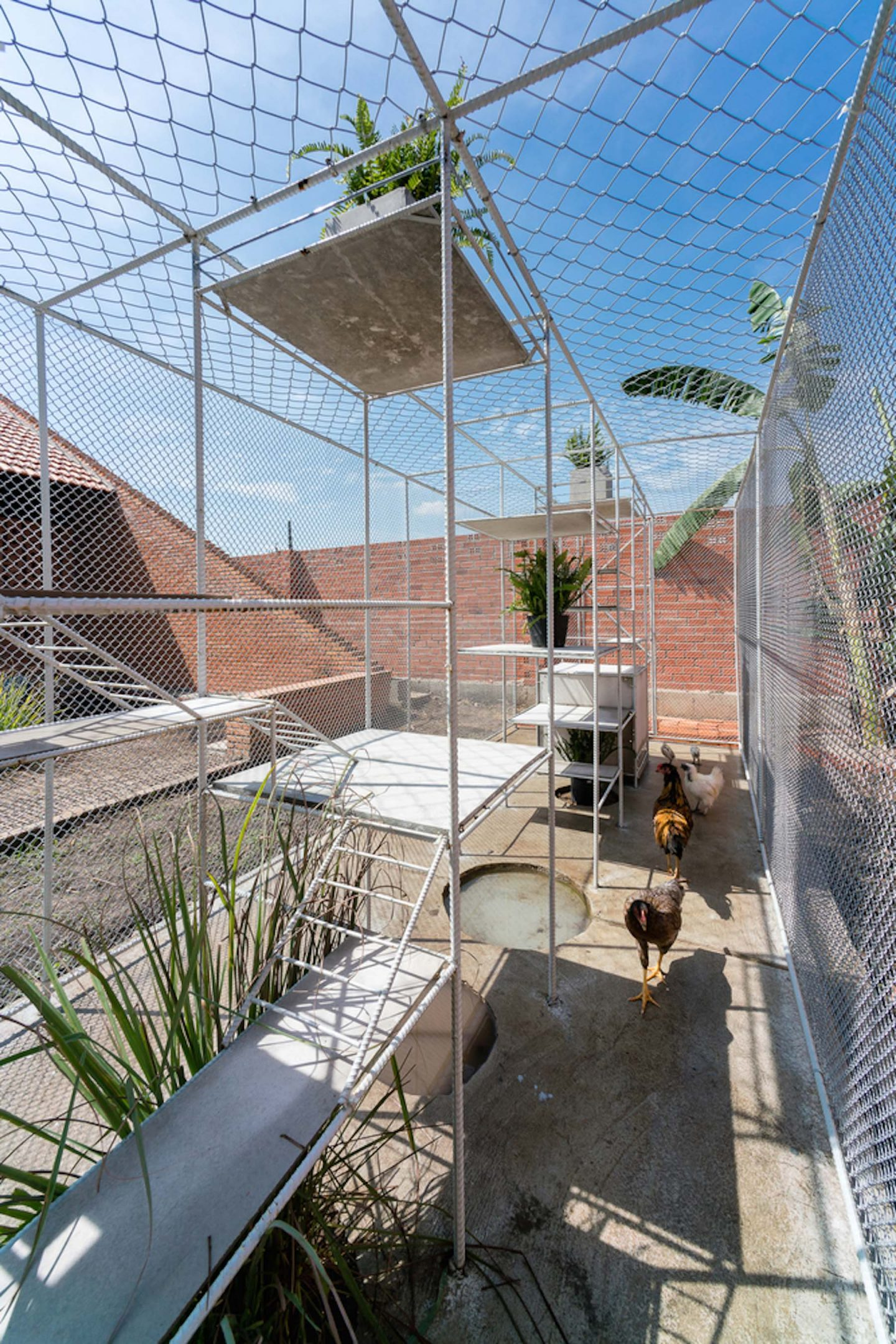 iGNANT-Architecture-Tropical-Space-Chicken-House-40