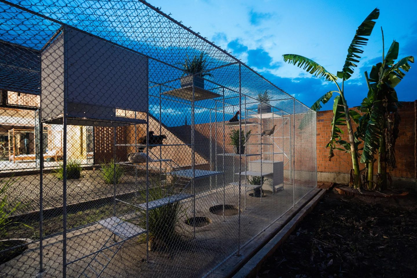 iGNANT-Architecture-Tropical-Space-Chicken-House-41