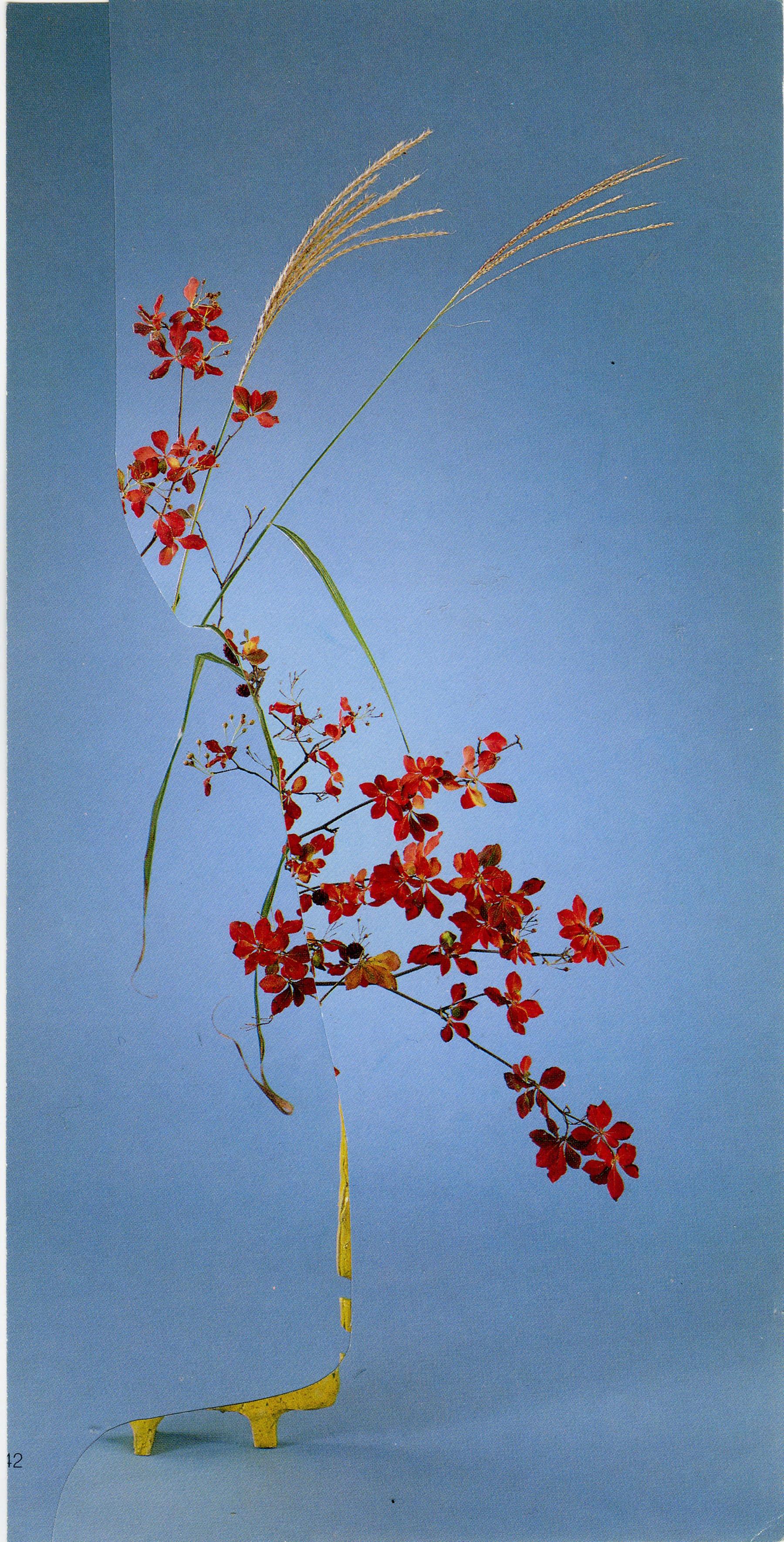 iGNANT-Art-Nicola-Kloosterman-Ikebana-002
