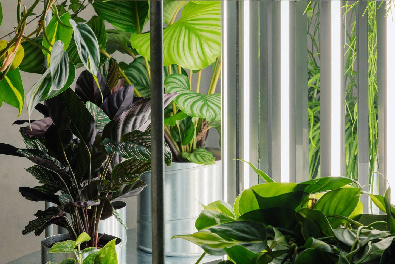 iGNANT-Design-Studio-David-Thulstrup-Tableau-Flower-Shop-005