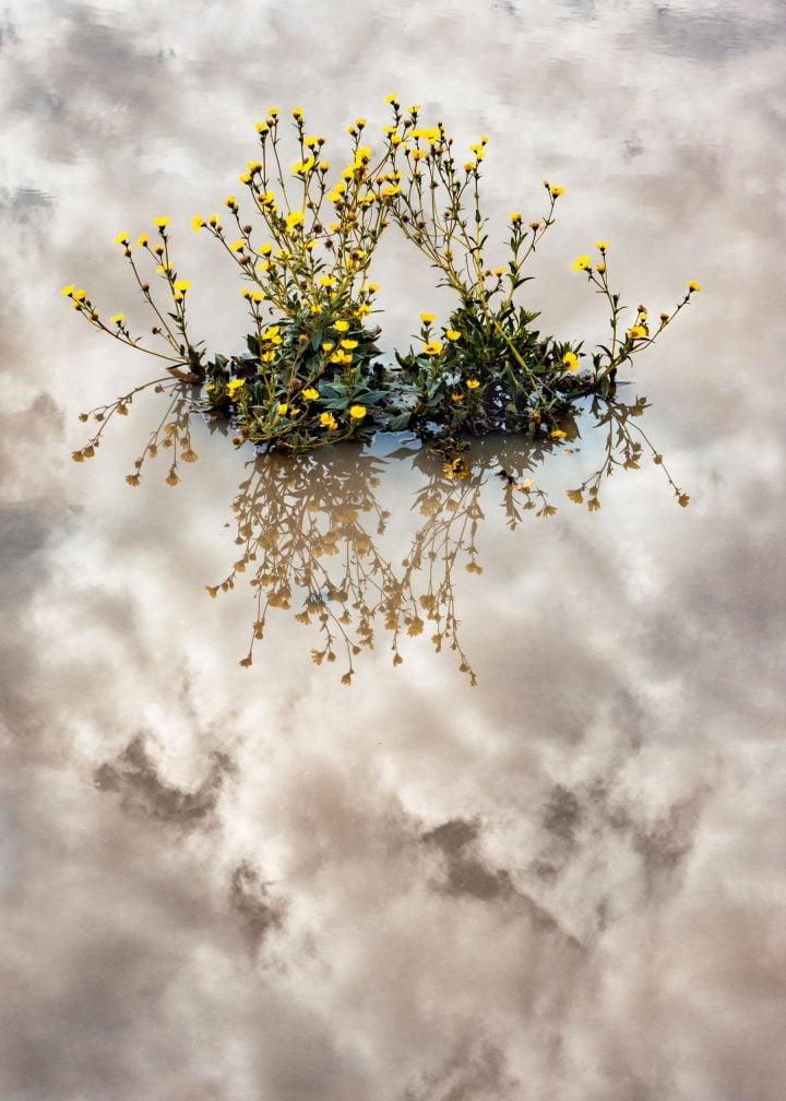 iGNANT-Photography-Mike-Slack-The-Transverse-Path-032