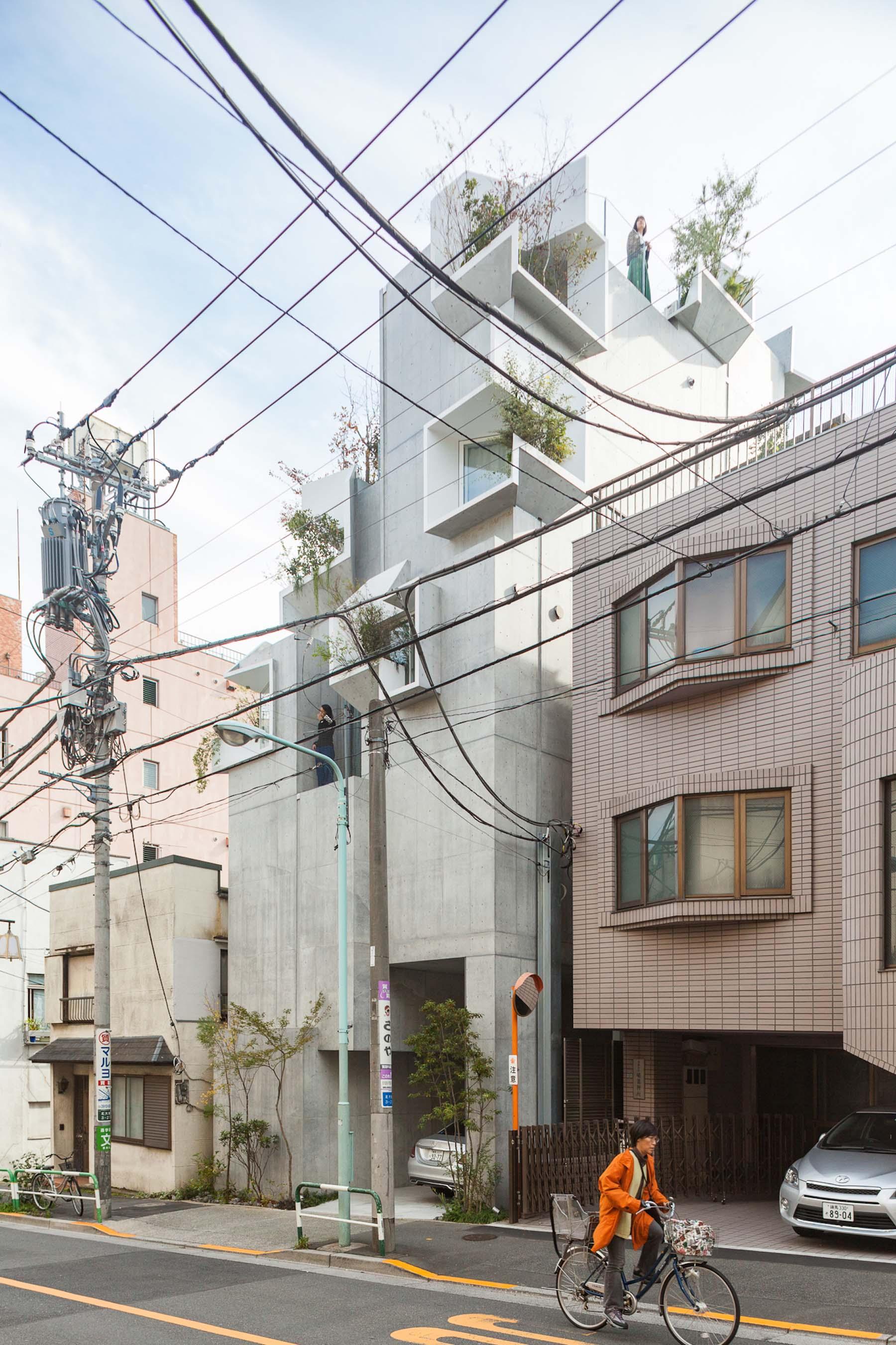 iGNANT-Architecture-Akihisa-Hirata-Tree-Ness-House-02