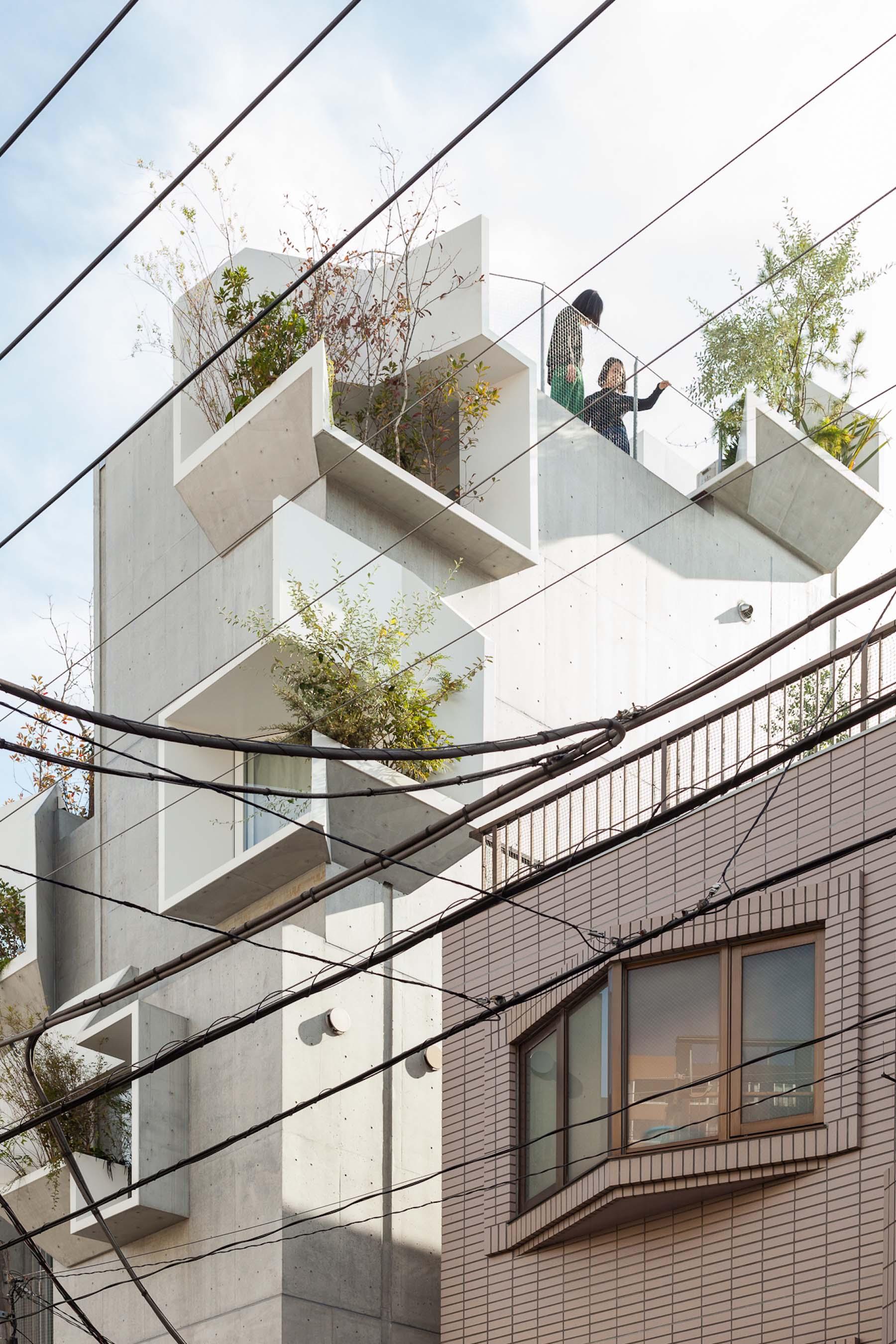 iGNANT-Architecture-Akihisa-Hirata-Tree-Ness-House-03