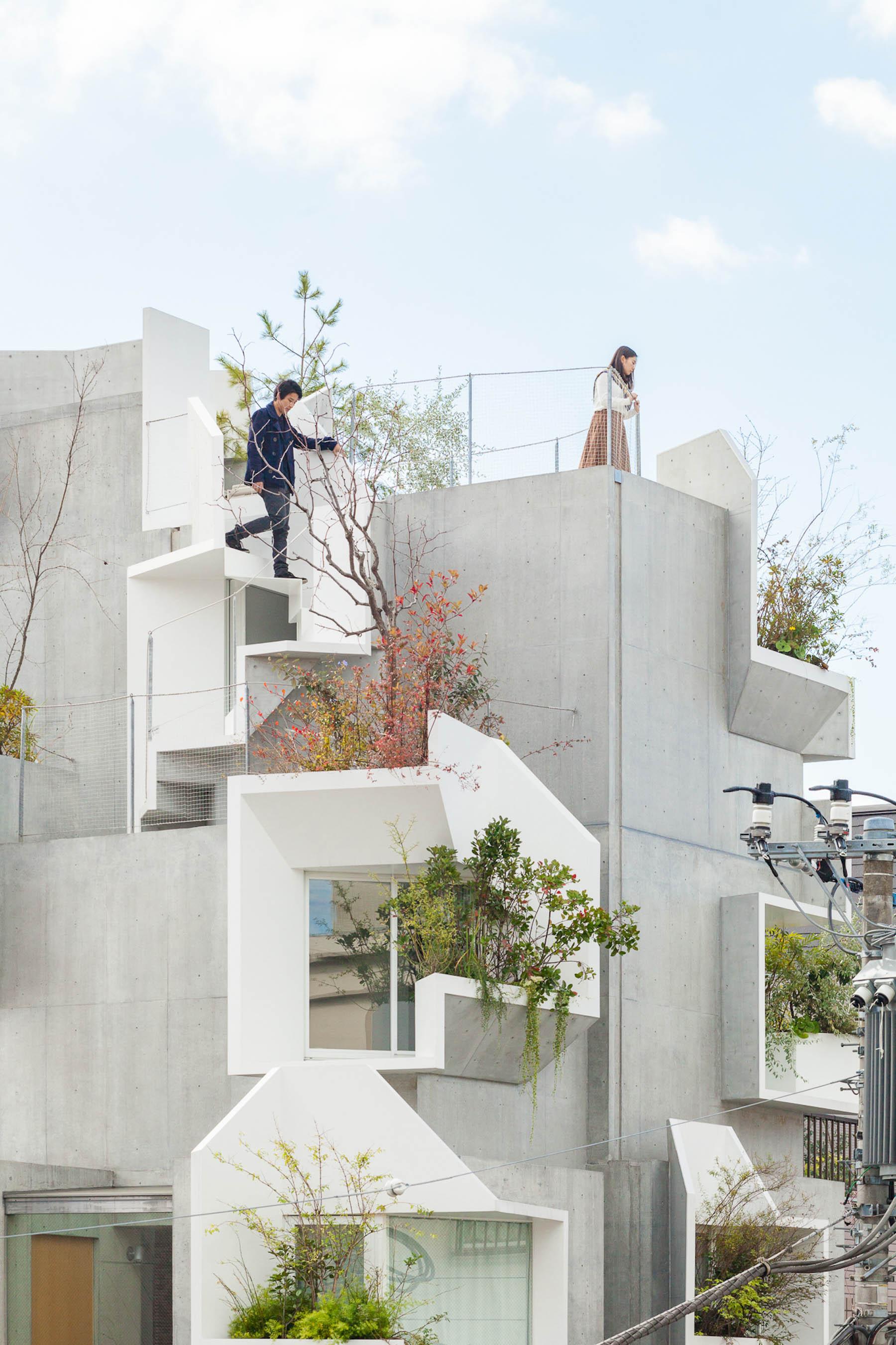 iGNANT-Architecture-Akihisa-Hirata-Tree-Ness-House-04