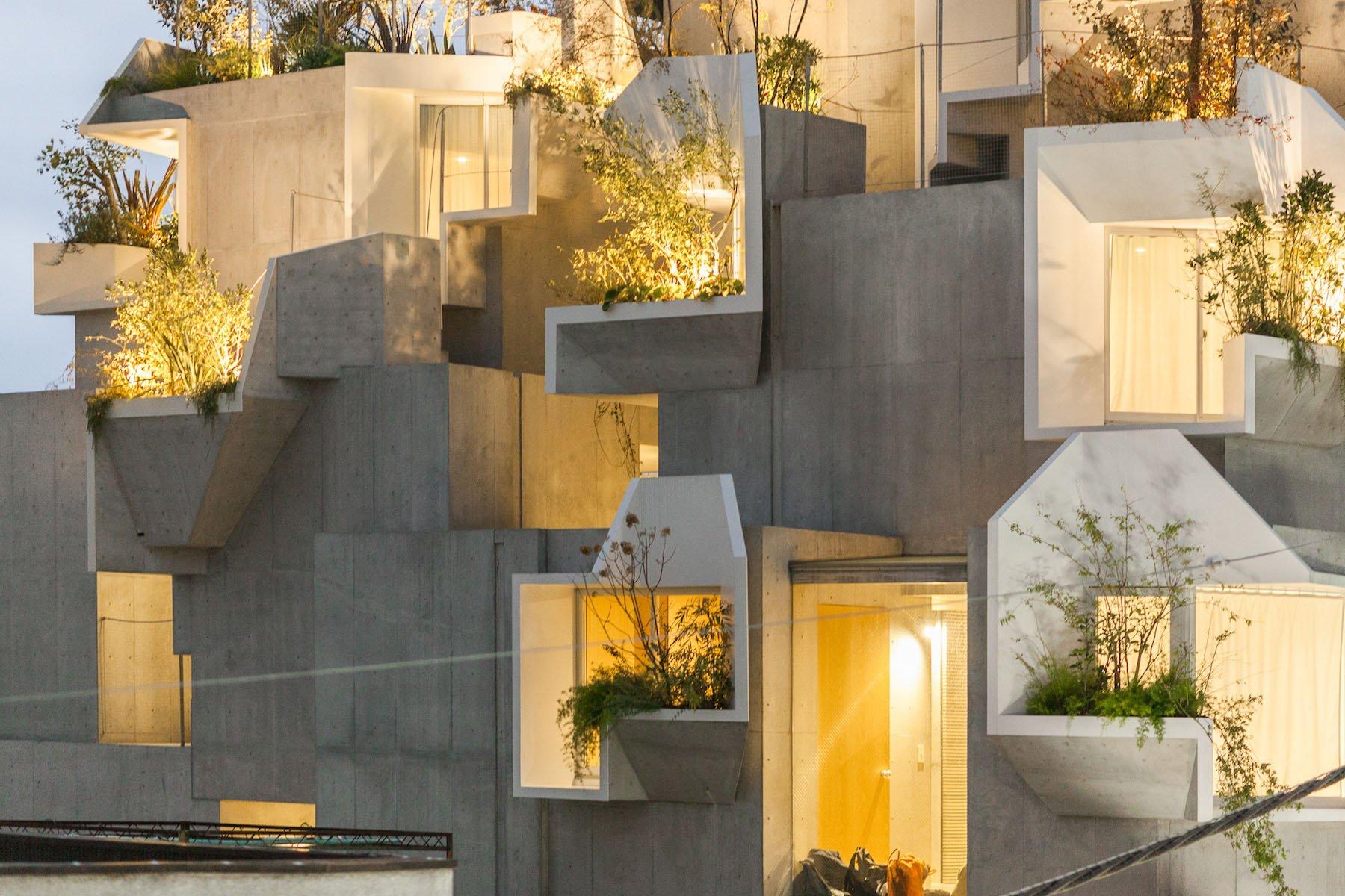 iGNANT-Architecture-Akihisa-Hirata-Tree-Ness-House-05