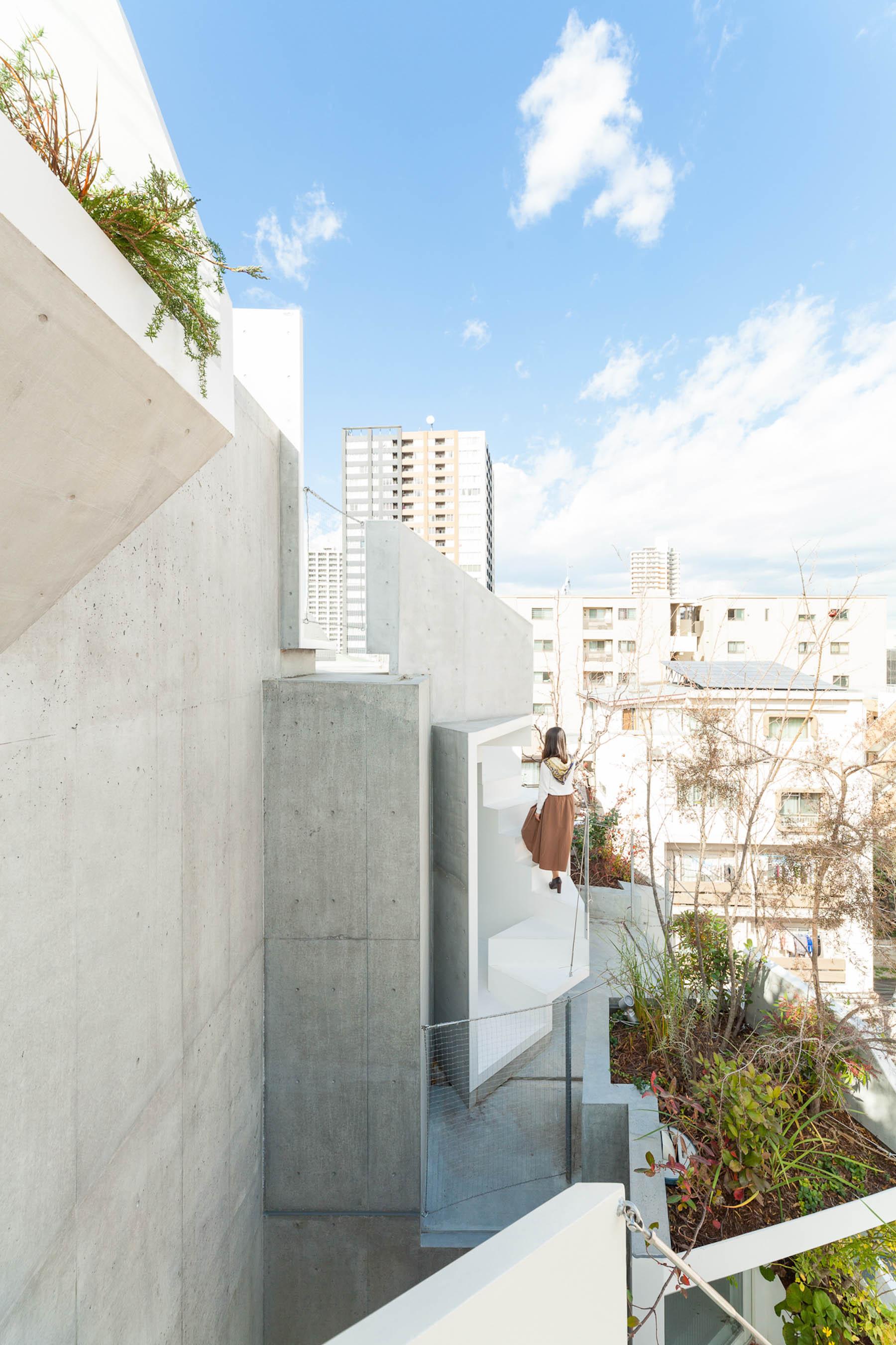 iGNANT-Architecture-Akihisa-Hirata-Tree-Ness-House-07