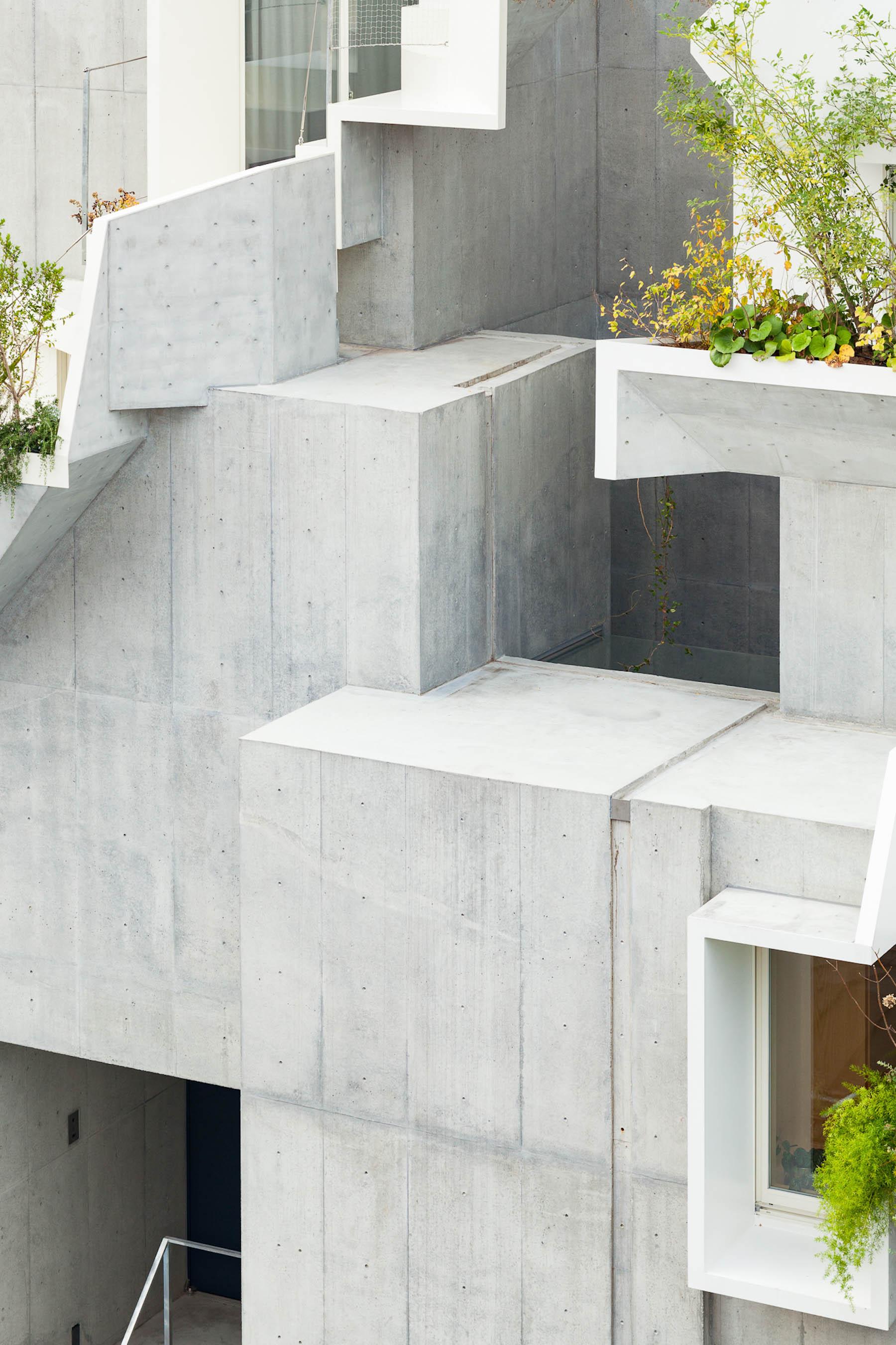 iGNANT-Architecture-Akihisa-Hirata-Tree-Ness-House-20