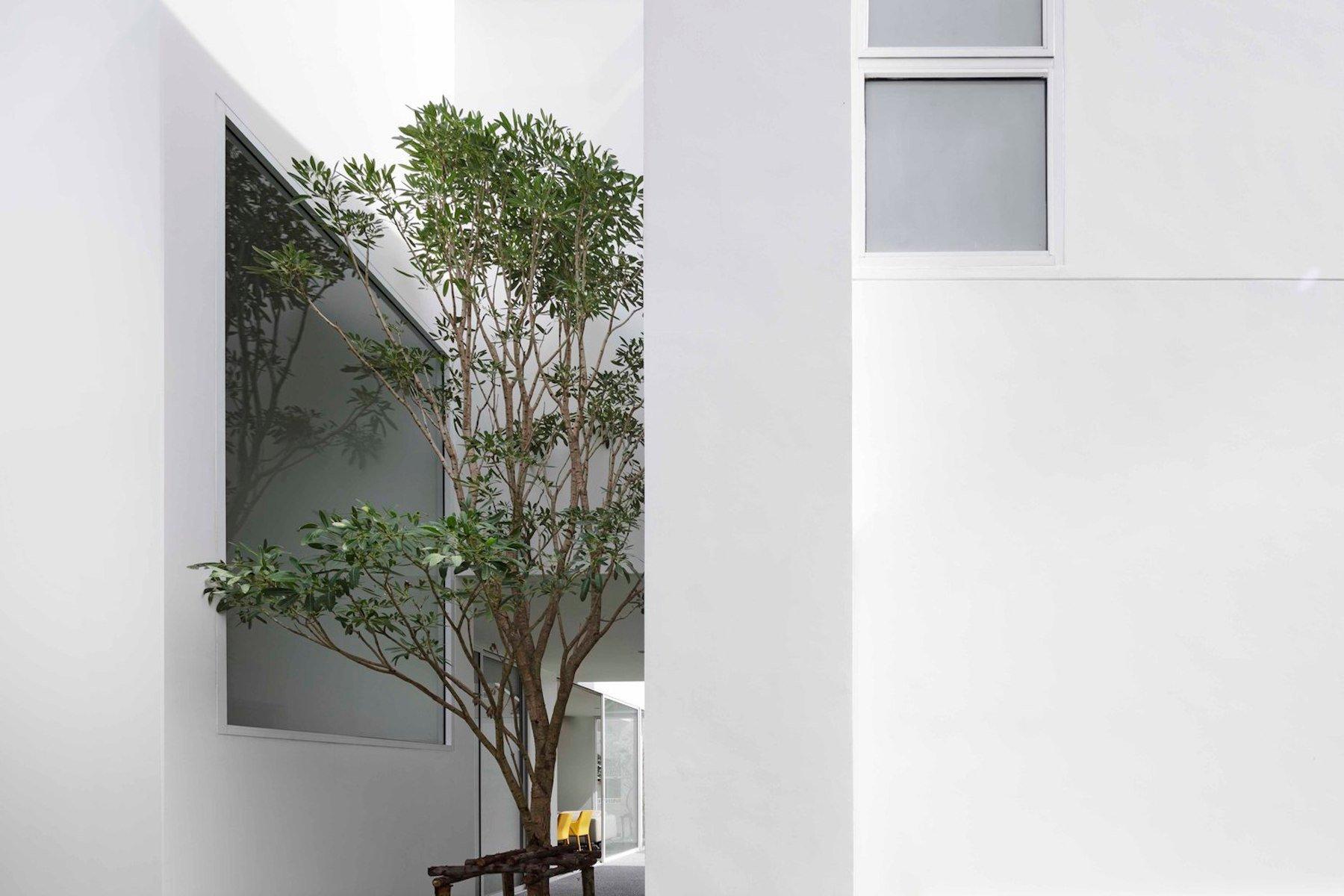 iGNANT-Architecture-Ayutt-And-Associates-Design-White-Box-House-01