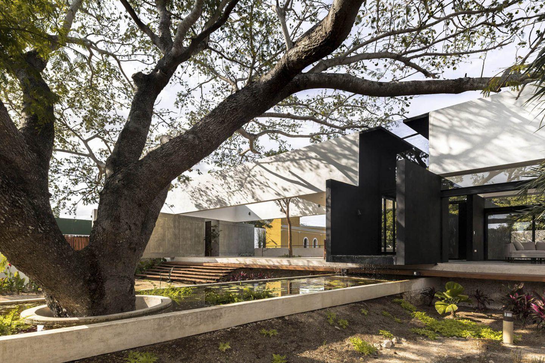 iGNANT-Architecture-AS Arquitectura-Casa-Del-Arbol-006