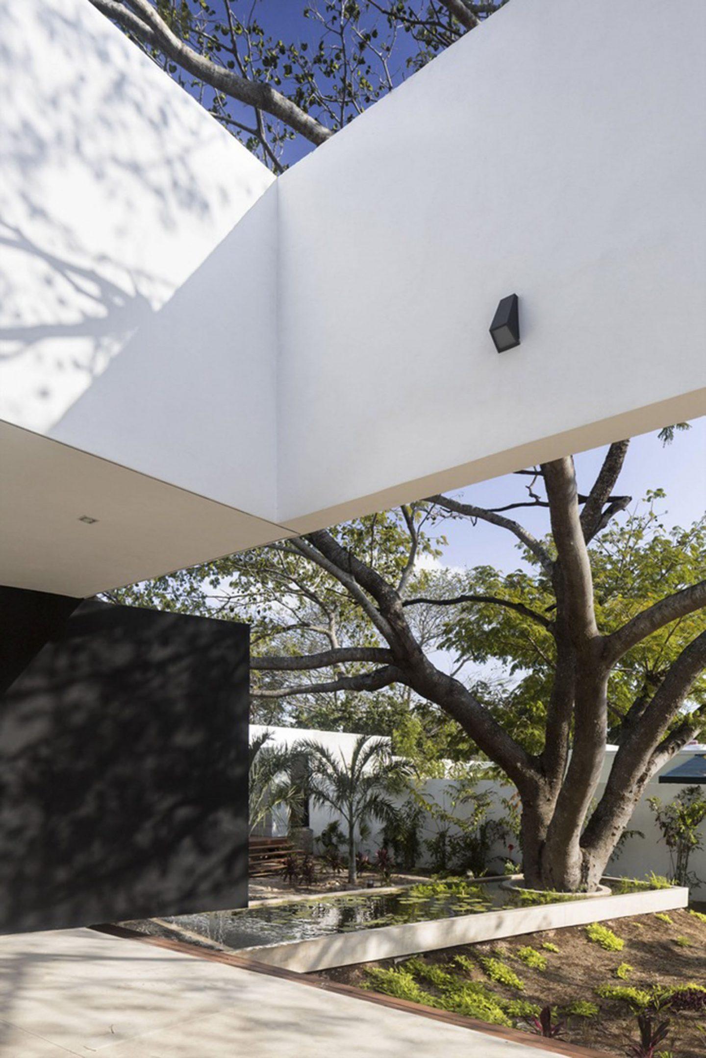 iGNANT-Architecture-AS Arquitectura-Casa-Del-Arbol-007