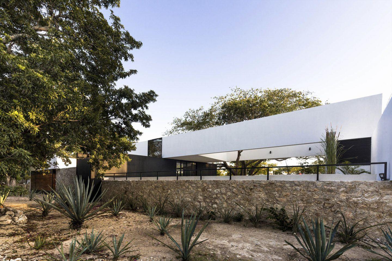 iGNANT-Architecture-AS Arquitectura-Casa-Del-Arbol-013