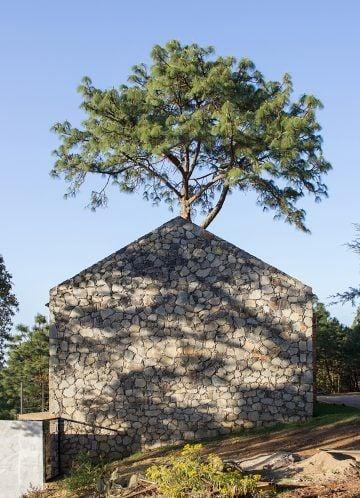 iGNANT-Architecture-EMA-House-Around-A-Pine-Tree-001