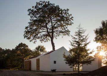 iGNANT-Architecture-EMA-House-Around-A-Pine-Tree-002